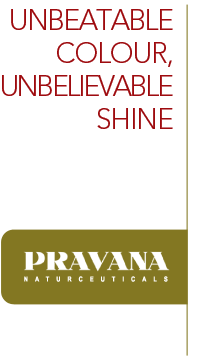 topbrands-headers-pravana